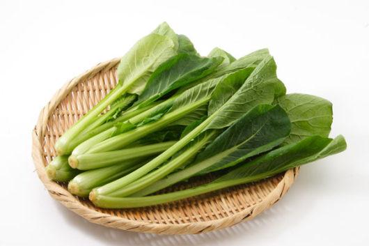 ✨カラダの免疫力をアップさせる食材✨