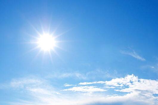太陽のビタミン☀